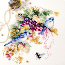 Blue jay and Grapes / Kék szajkó és szőlő