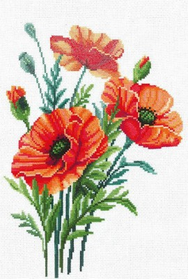 Poppy flowers / Pipacsok