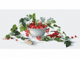 Red Currants / Piros ribizli