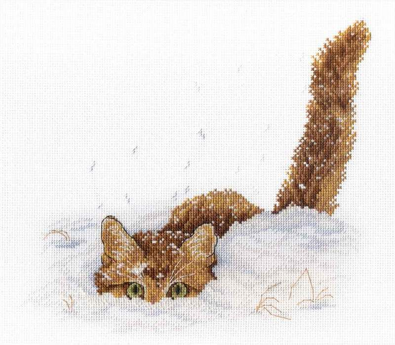 Cat in the snow / Macska a hóban